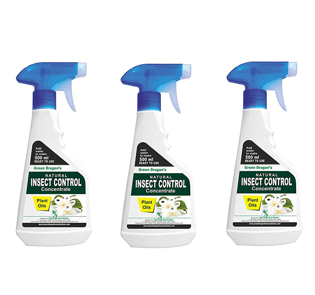 Green Dragon's Natural Insect Control Concentrate pack of 3 (1500 ml)