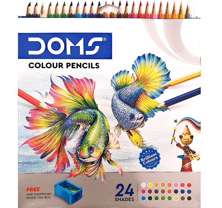 Buy DOMS Colour Pencil (24 Shades)