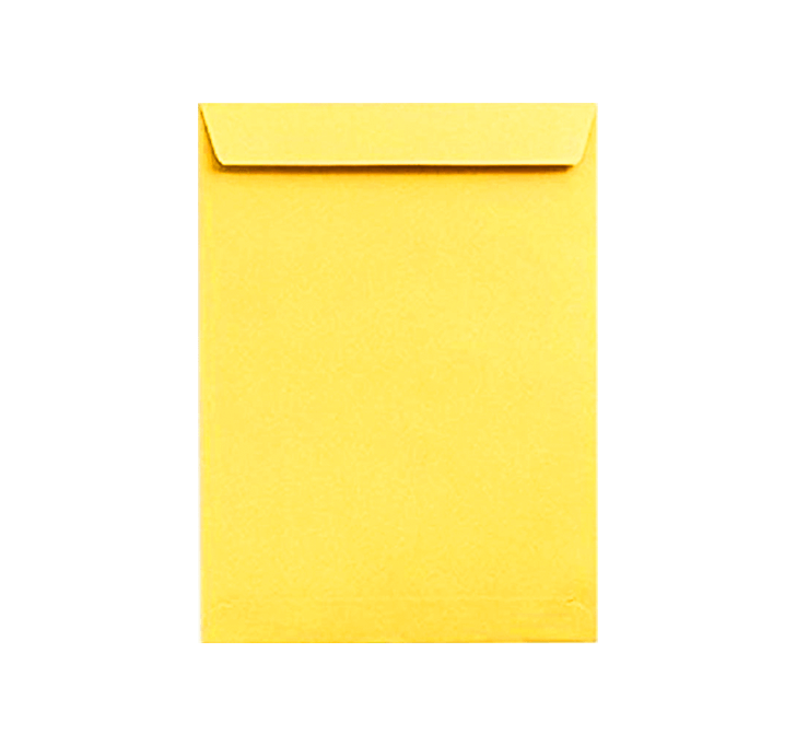Buy Yellow Envelope Clothline (A4) (12 X 10 Inch)
