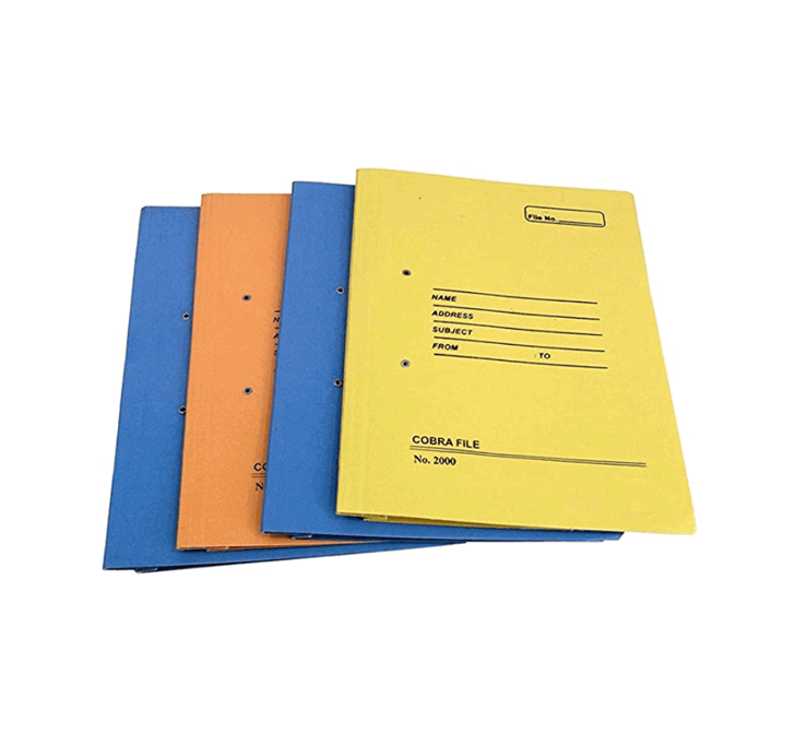 Buy Cobra File (Multicolor Spring File)